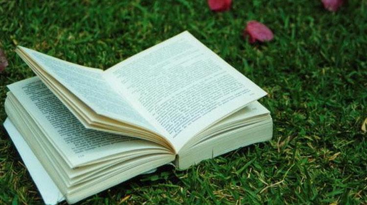 Fundus knjiga Muzeju srpske književnosti i Muzeju knjige